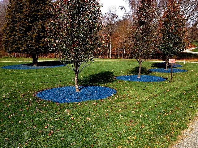 Image result for blue mulch